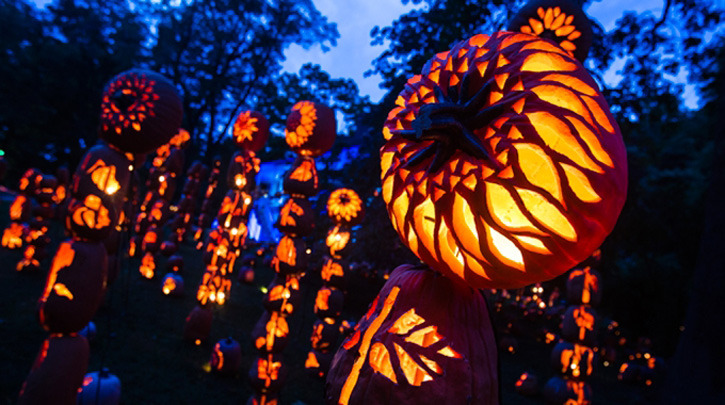 Great Jack O Lantern Blaze Tips